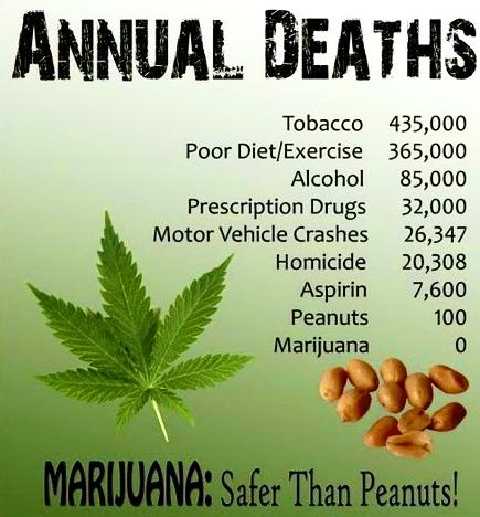 cannabis-safe