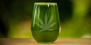 Raw Cannabis Juice Replaced 40 Prescription Drugs
