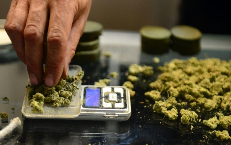 afp-germany-to-legalise-cannabis