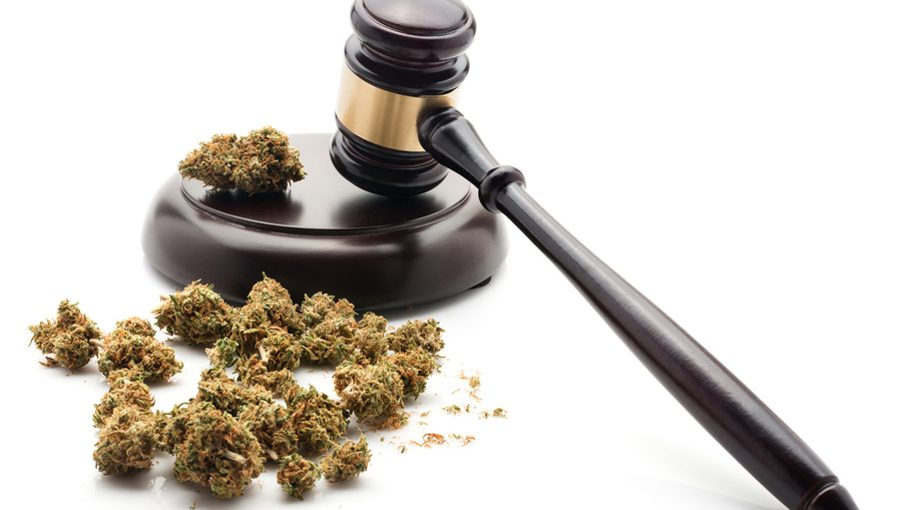 cannabis-and-law