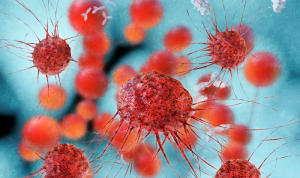 How Cannabis Fights Cancer at Cellular Level