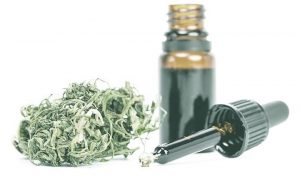 Exponential Growth Predicted in CBD Oil Market