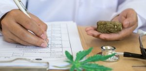 Jobs in Cannabis Industry: More & Better Paying