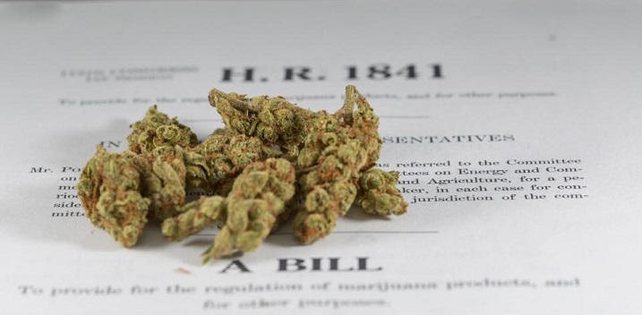 States Poised to Legalize Cannabis In 2018
