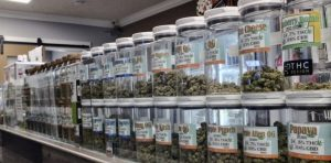 DEA Thinks Synthetic THC Is Better Than Real Weed