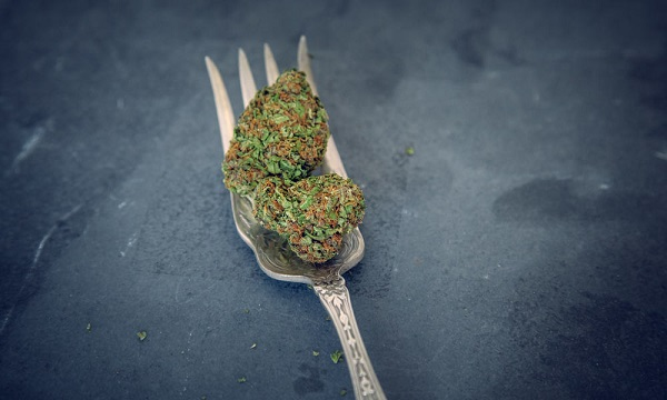 What Happens When You Eat Raw Cannabis?