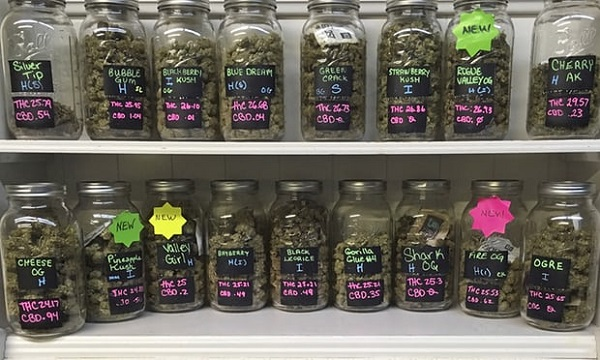 Legal cannabis for sale at a shop in Salem, Oregon.