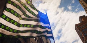 The Bill That Can End Federal Marijuana Prohibition