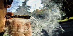Top 8 Marijuana Strains to Avoid Powerful Highs