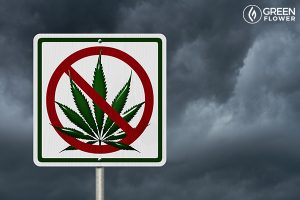 Cannabis Withdrawal: How to Ace A Cannabis Break