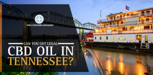 CBD Oil Legalized In Tennessee, But Can You Get It?