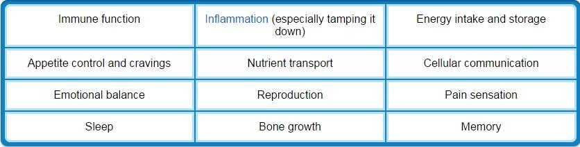 biological-processes