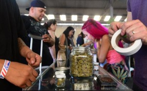 Study Finds No Increase in Adolescent Use of Legalized Medical Marijuana
