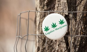 10 Research-Backed Reasons for Legalizing Cannabis