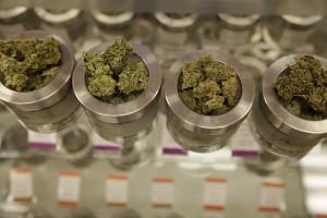 Different marijuana varieties are displayed at a medical marijuana dispensary, Kaya Shack, in Portland, Ore. Sanders's plan would allow legal marijuana businesses to use banking services. (Gosia Wozniacka/AP)