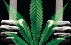 U.S. Will Release 6,000 Non-Violent Drug Offenders