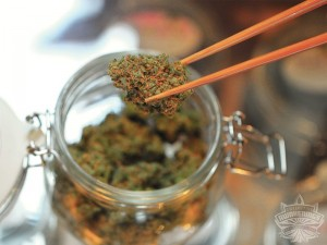 All About Buying Recreational Weed in Portland