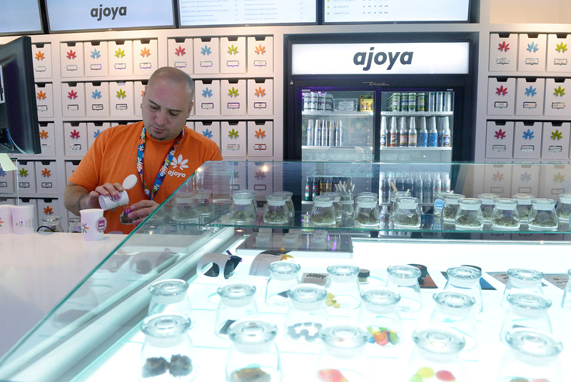 Ajoya is a new marijuana dispensary in Louisville, CO and it's interior space offers a new retail experience for customers. The interior was designed by Roth Sheppard Architects. Andrew DeLusso works the counter at the store. The edibles are displayed under the glass at right. Photos of the colorful space on Thursday, November 12, 2015. (Photo by Cyrus McCrimmon/The Denver Post)
