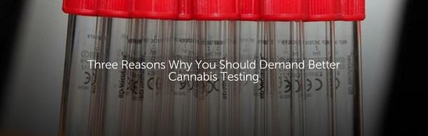 cannabis-testing