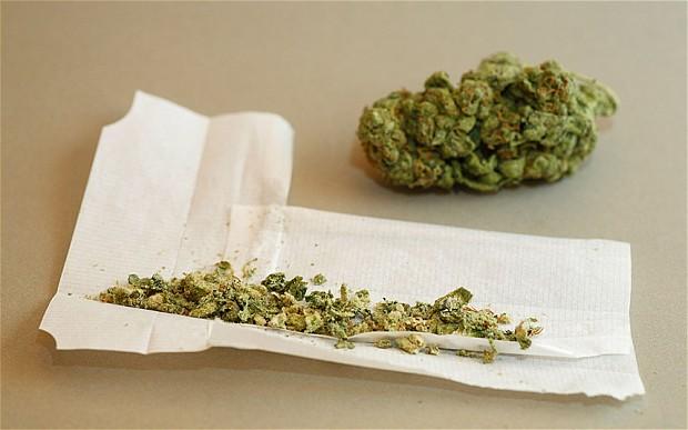 Marijuana is illegal at federal level  Photo: Stuart Aylmer/ Alamy