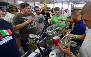 A crowd watches as marijuana is divvied up during Los Angeles' first-ever cannabis farmers market at the West Coast Collective medical marijuana dispensary on July 4, 2014. (Frederic J. Brown, AFP/Getty Images