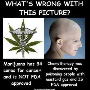 marijuana-cancer-300x300