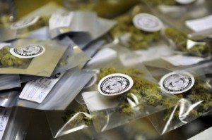 Packages of marijuana labeled for recreational use at Northern Lights Cannabis Co in Edgewater. (Seth McConnell, Denver Post file)