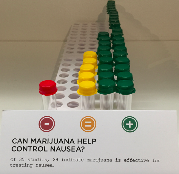 The section on medical marijuana highlighted the results of hundreds of marijuana's clinical use, pro and con. (Photo: Andrew Bender)