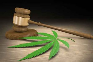 criminal justice paper on marijuana decriminalization Marijuana decriminalization at the state level generally removes  of current  criminal justice sanctions related to marijuana, as there is a.