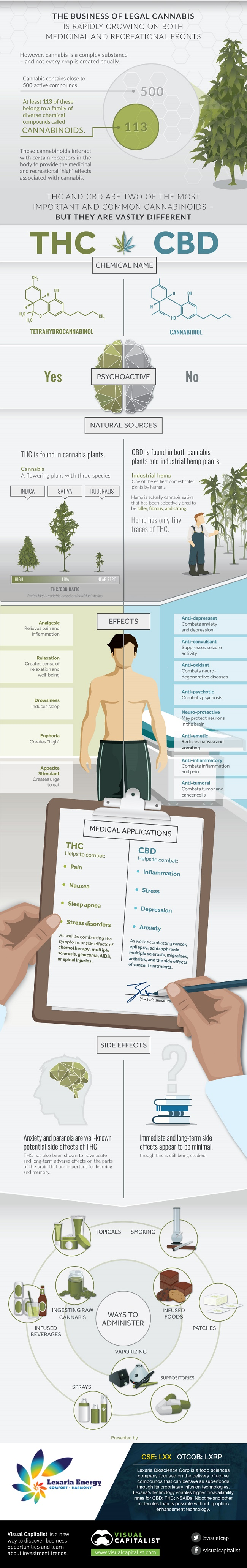 comparing-thc-vs-cbd-full