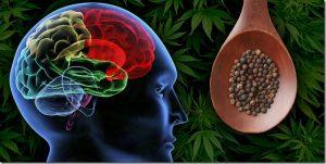 cannabis induced anxiety