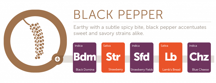 black-pepper2x