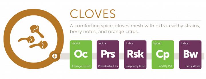 cloves2x
