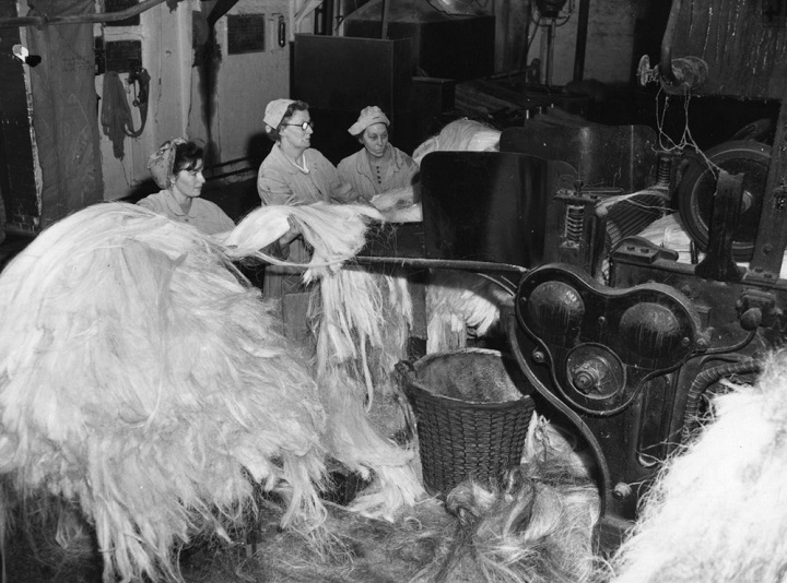 Women process hemp fibers in 1956. (L. Blandford, Topical Press Agency/Getty Images)