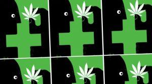 Now Regulate Your Dose of Medical Marijuana