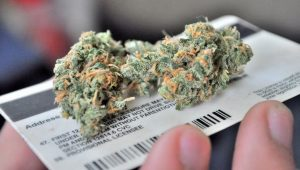 legal cannabis
