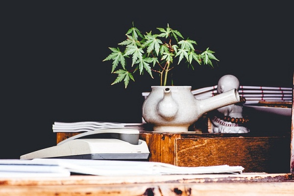 In the history of marijuana, its first recorded use was as medicine by China's Emperor Shen Neng.
