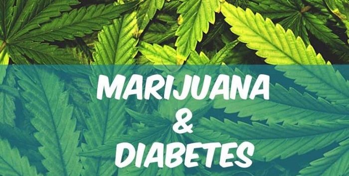 marijuana for diabetes