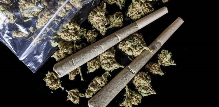 Florida Dems Challenge Medical Cannabis Smoking Ban
