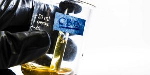 UN to decide fate of CBD