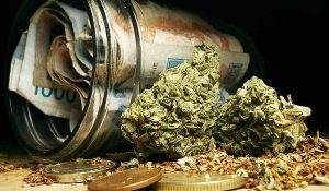 10 Cannabis Stories: Bank On The Bud