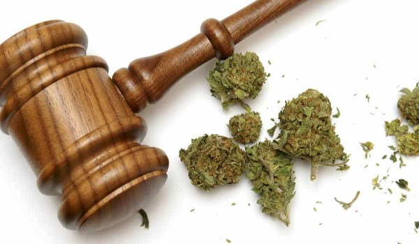 10 Cannabis Stories: Cannabis In The Courts