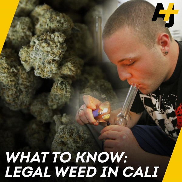 Legal Weed in California