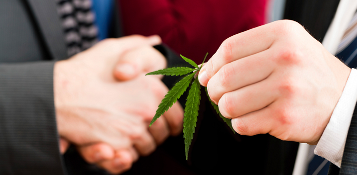 Mixed Signals from US Politicians About Cannabis Policy