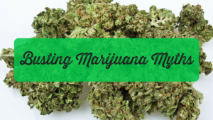 10 Most Longstanding Marijuana Myths Busted