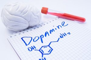 Cannabis and Dopamine Levels