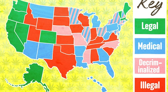 How Do Marijuana Laws Fare in the 50 States?