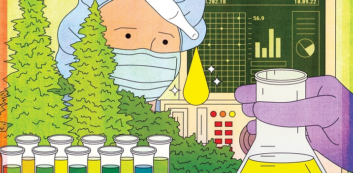 Why CBD Is Hailed as The Miracle Cannabis Compound