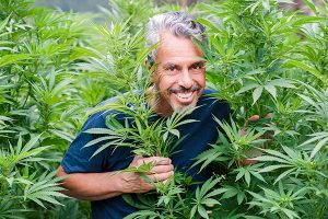 Get to Know Cannabis from This Medicine Hunter