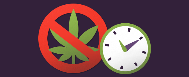 How to bring down cannabis tolerance without taking a break